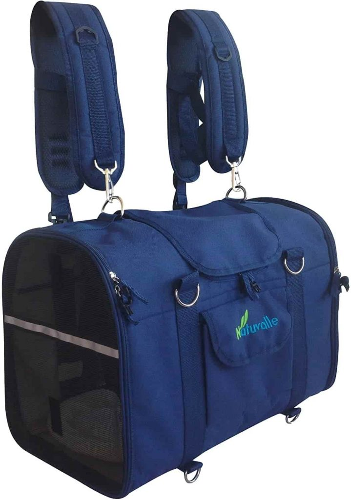 Best cat backpack for small cats