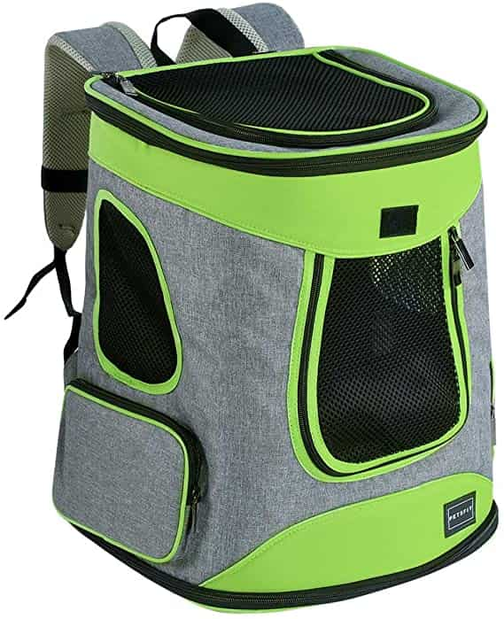 Petsfit Comfort Cat Backpack for Larger Cats