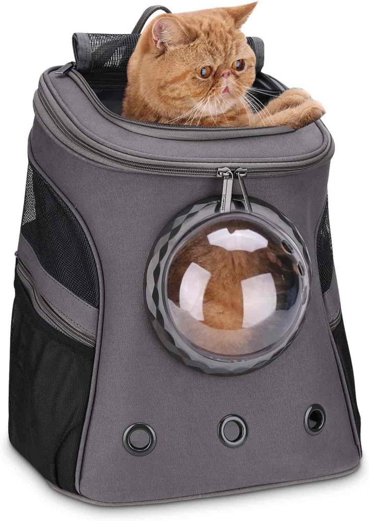 Taylor Swift's Cat Backpack Lollimeow Large Cat Backpack Carrier